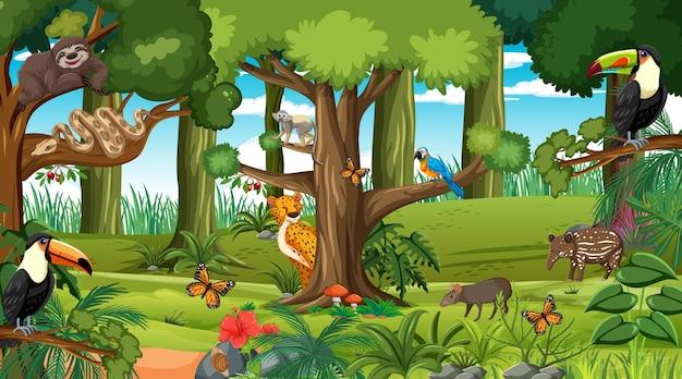 さまざまな野生動物がいる昼間のシーンの森