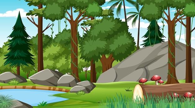 さまざまな森の木々が生い茂る昼間の森 Premiumベクター