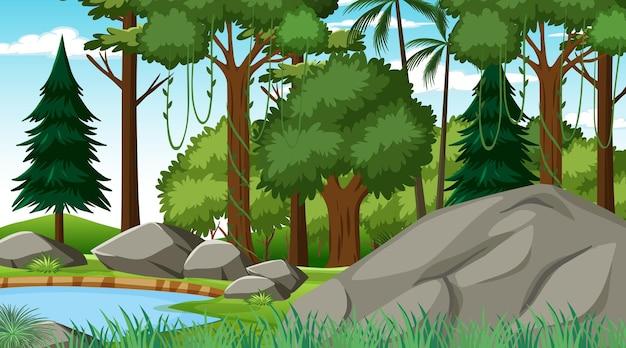 Лес в дневное время с различными лесными деревьями