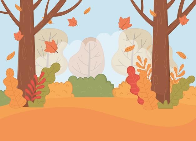 Forest autumn season landscape scene