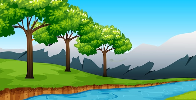 Forest background scene with many tree and river