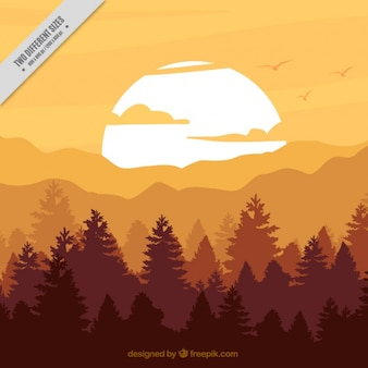 Forest background at sunset in brown tones