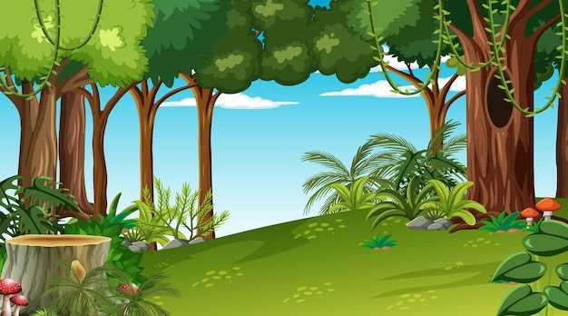 Forest at daytime scene with various forest plant and tree