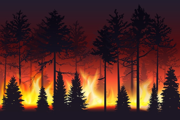 Forest fire realistic silhouette landscape