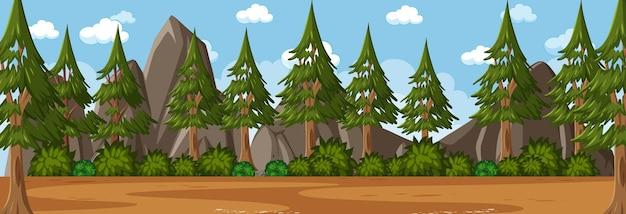 多くの松の木の背景を持つ日中の森の水平方向のシーン