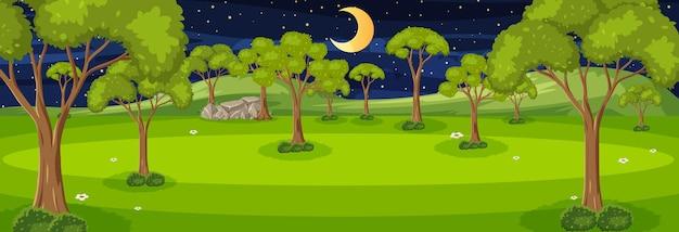 たくさんの木がある夜の森の水平方向のシーン