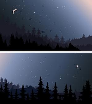夜の森。美しい自然の風景のセットです。