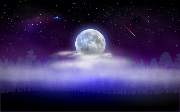 満月が雲に隠れる森の風景。魔法の星空の夜。ベクトルイラスト。