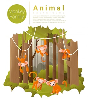 Forest landscape background with monkeys
