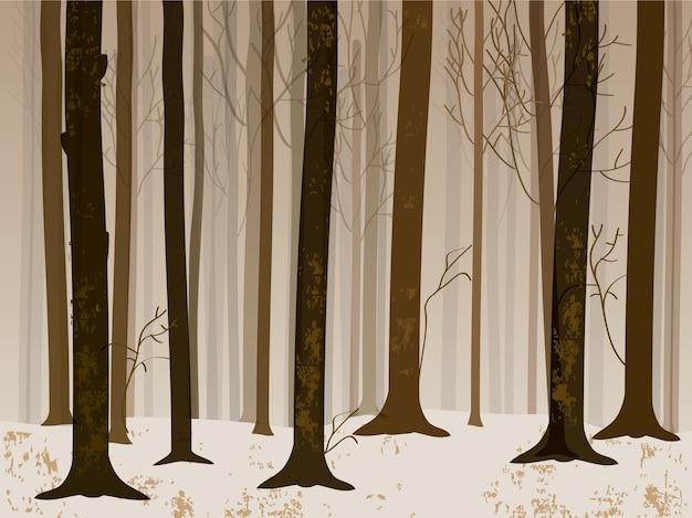 Priorità bassa del paesaggio della foresta