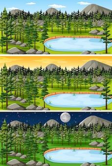 1日の異なる時間の森の風景