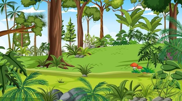 多くの異なる木がある日中の森の風景シーン