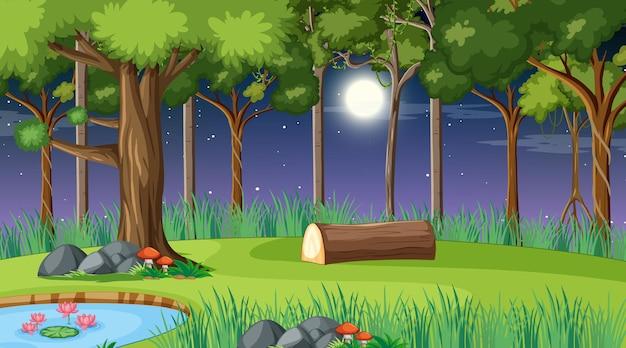 많은 다른 나무와 밤에 숲 풍경 장면 프리미엄 벡터