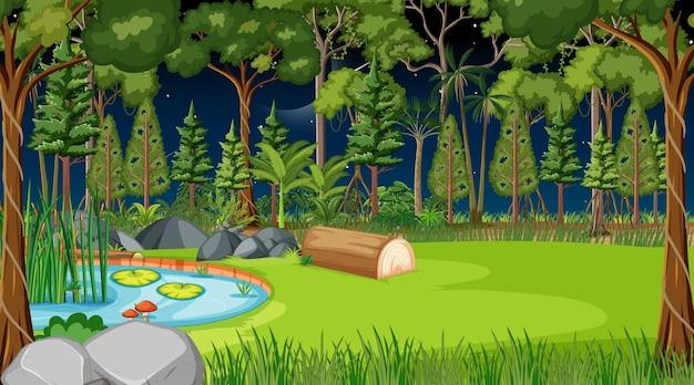 많은 나무와 밤에 숲 풍경 장면