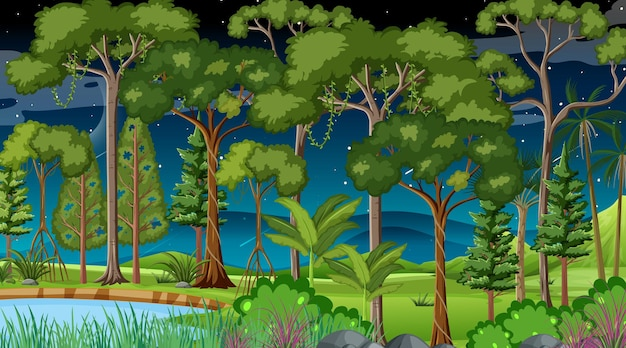 Forest landscape scene at night with many different trees