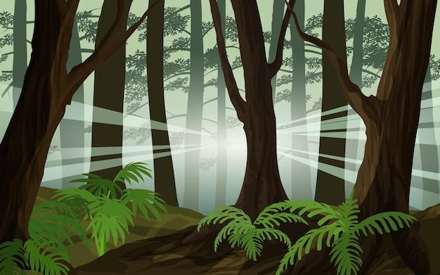 Лесной пейзаж с солнечным светом сквозь деревья