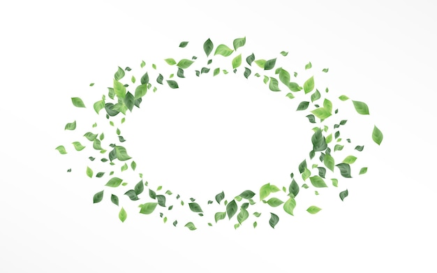 Forest leaf motion white background template