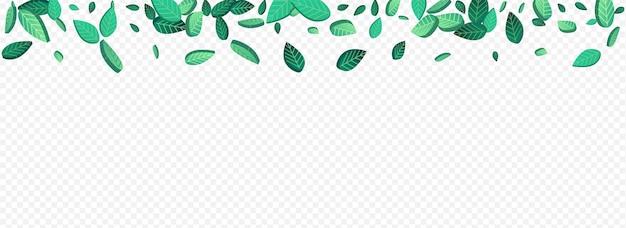 森の葉有機ベクトルパノラマ透明背景ブランチ。木の葉のパターン。グラッシーグリーンのリアルな背景。葉のぼかしの境界線。
