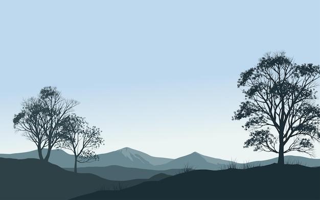 Лесной утренний пейзаж в силуэт