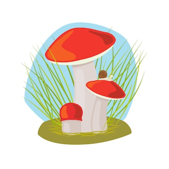 Forest mushroom with grass