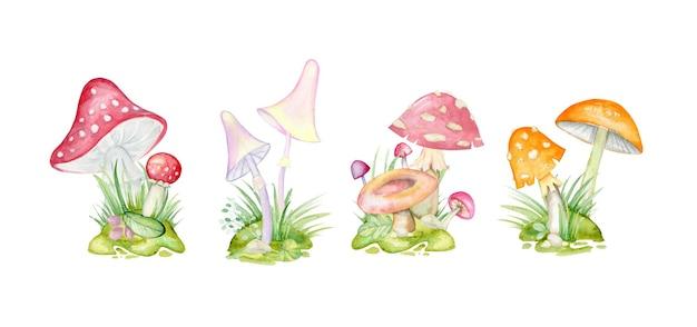 Лесные грибы, листья, зелень, поляны, ягоды
