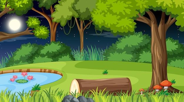 夜に池とたくさんの木がある森の自然シーン