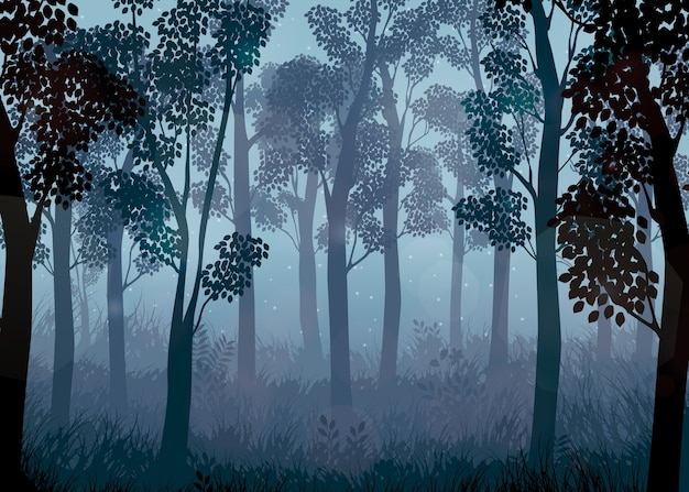 Forest at night background