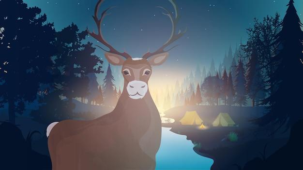 森の夜の風景。川のある森。角のクローズアップと鹿。