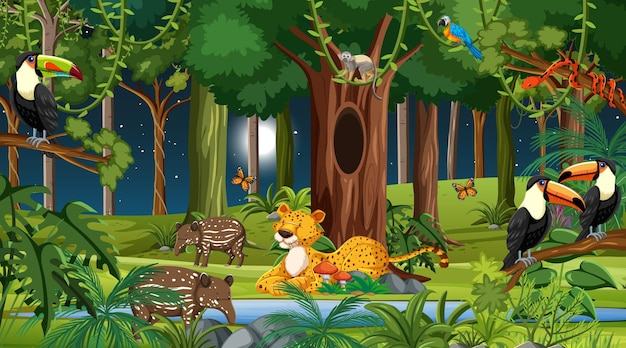 Forest at night scene with different wild animals