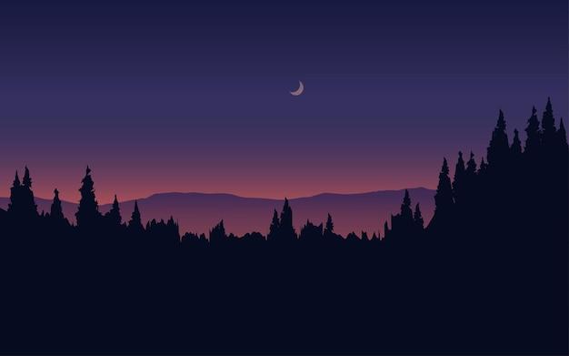숲 밤 실루엣 풍경