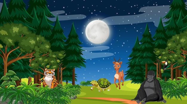 Forest at night time scene with different wild animals