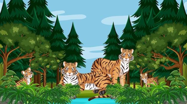 Сцена в лесу или тропическом лесу с семьей тигра
