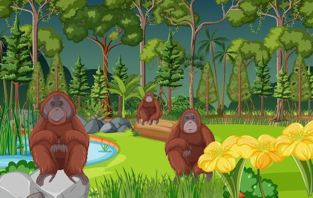 トラの家族と一緒に森や熱帯雨林のシーン