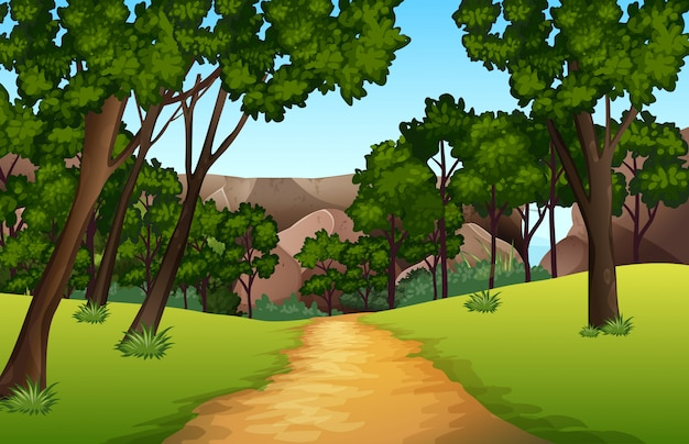 Forest pathway landscape scene