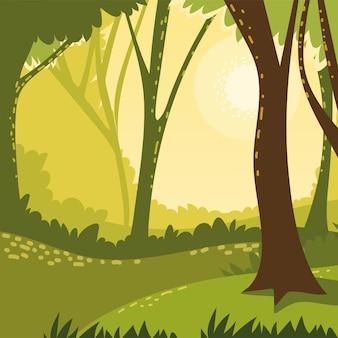 산림 식물과 나무 초원 자연