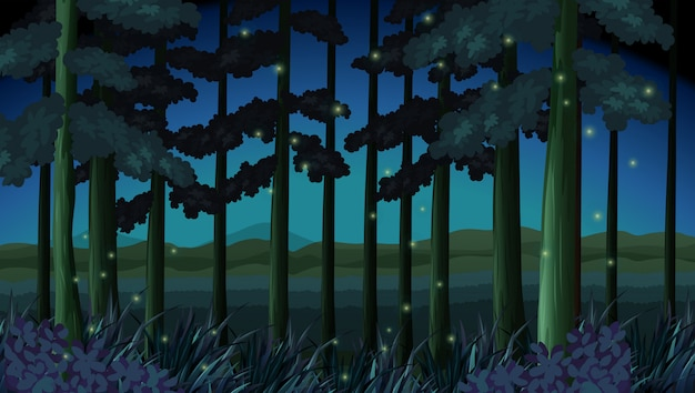 반딧불 밤에 숲 현장