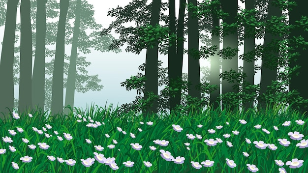 Forest scene at morning time with grass and flowers