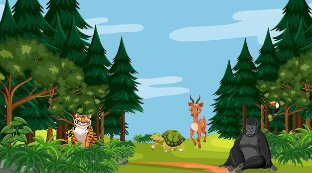 Лесная сцена с разными дикими животными