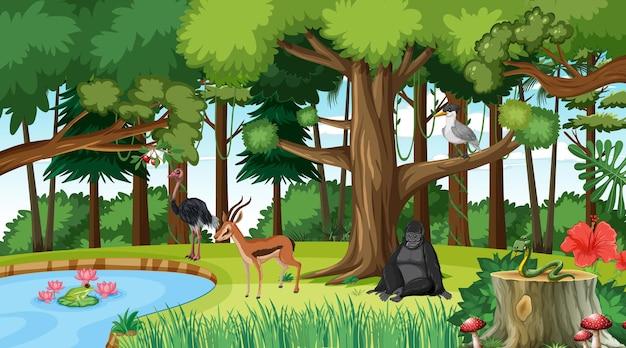 다른 야생 동물과 숲 장면