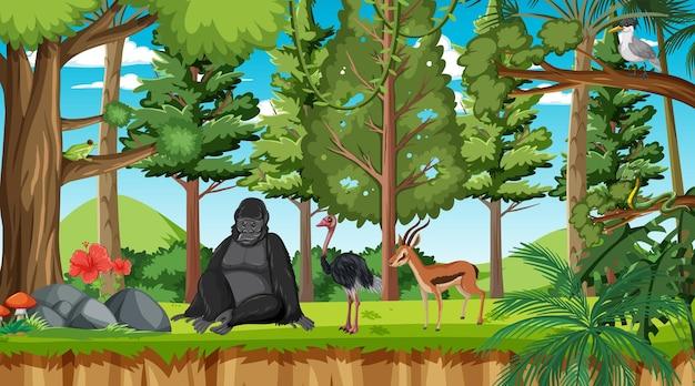 Forest scene with different wild animals