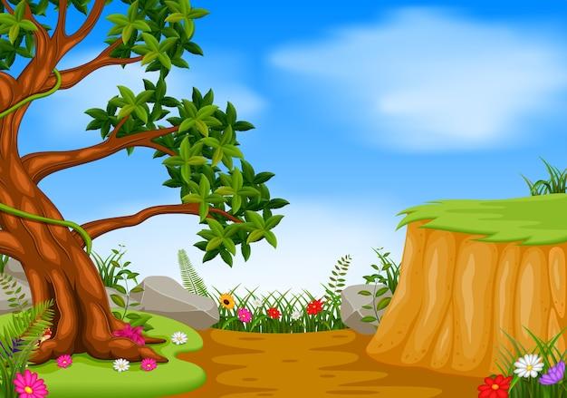 山の崖のある森の風景