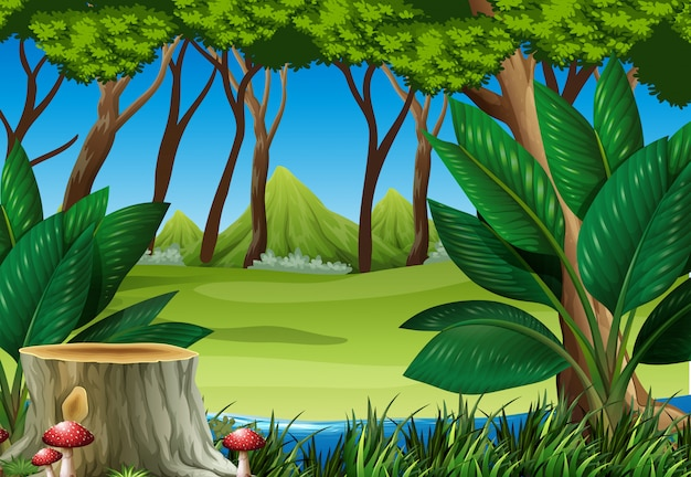 Forest scene with stump tree and mountains