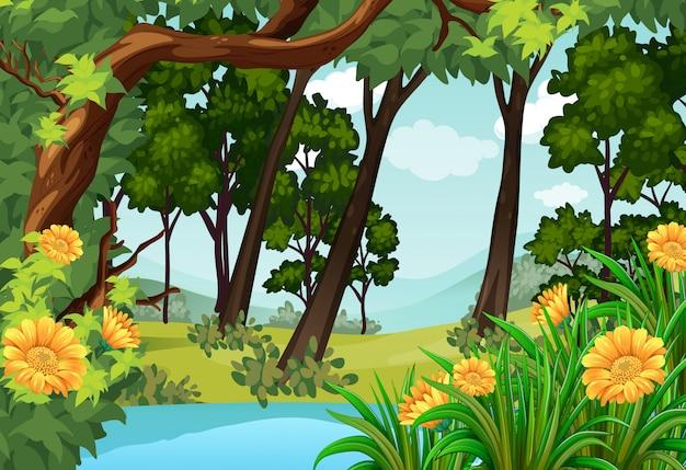 木と池のある森の風景