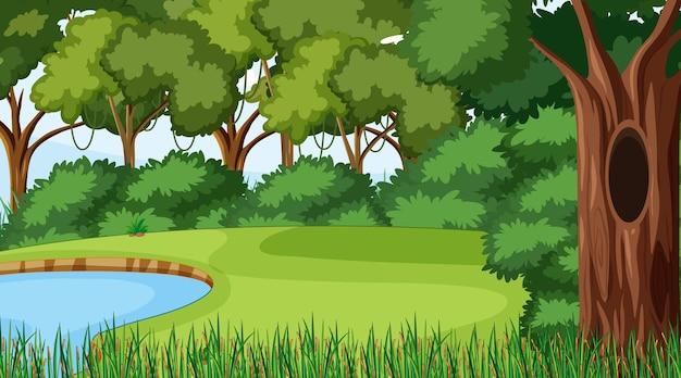 さまざまな森の木々や池のある森のシーン