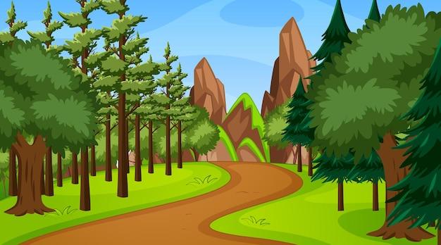 さまざまな森の木々と歩道の小道がある森のシーン