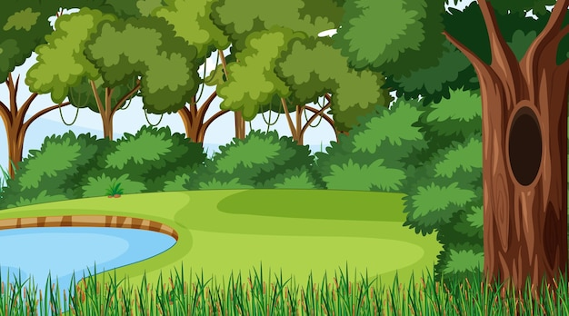 Forest scene with various forest trees and pond