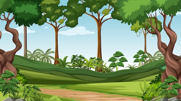 Forest scene with various forest trees