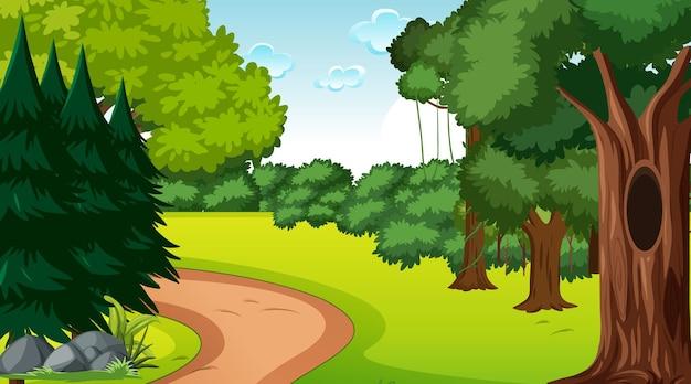 さまざまな森の木々のある森のシーン