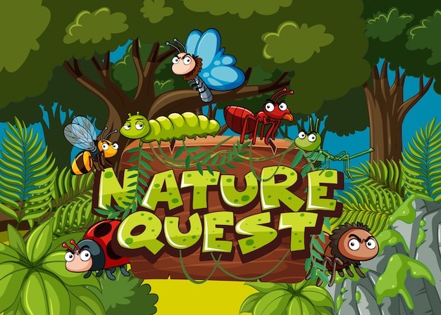 Forest scene with word nature quest and many bugs