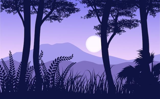 森のシルエット風景画像